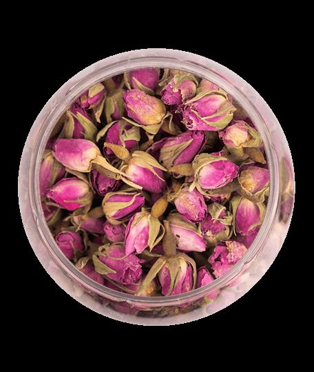 pink perzsa rózsa
